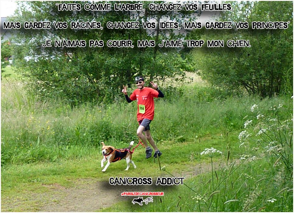 j'aime le canicross et mon beagle