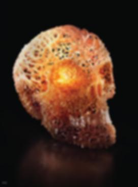 Skull CGI