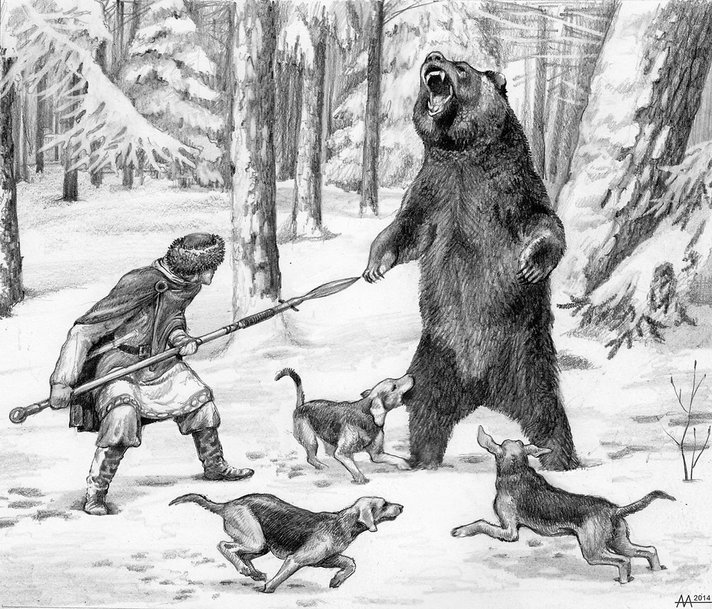 Winter hunting of shliakhtich for the brown bear at hibernating den with a spear, mid 17th century. Special  dogs turned the bear out of the den. The furious bear tends to attack the hunter who waiting nearby with a spear. At the moment when the bear stood on its hind paws in front of the hunter for the final killing throw, the brave hunter thrust a spear to the bear's heart, and the end of the spear rested against the ground. Drawing by Aliaksandr Mitianin.