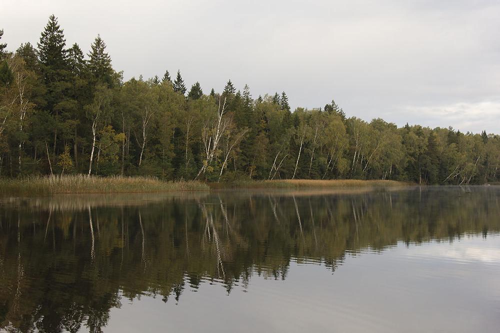 Бераг возера Кромань.