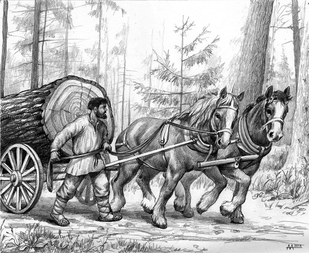 Transporting timber in Naliboki Forest, 16th-18th centuries. Drawing by Aliaksandr Mitianin.