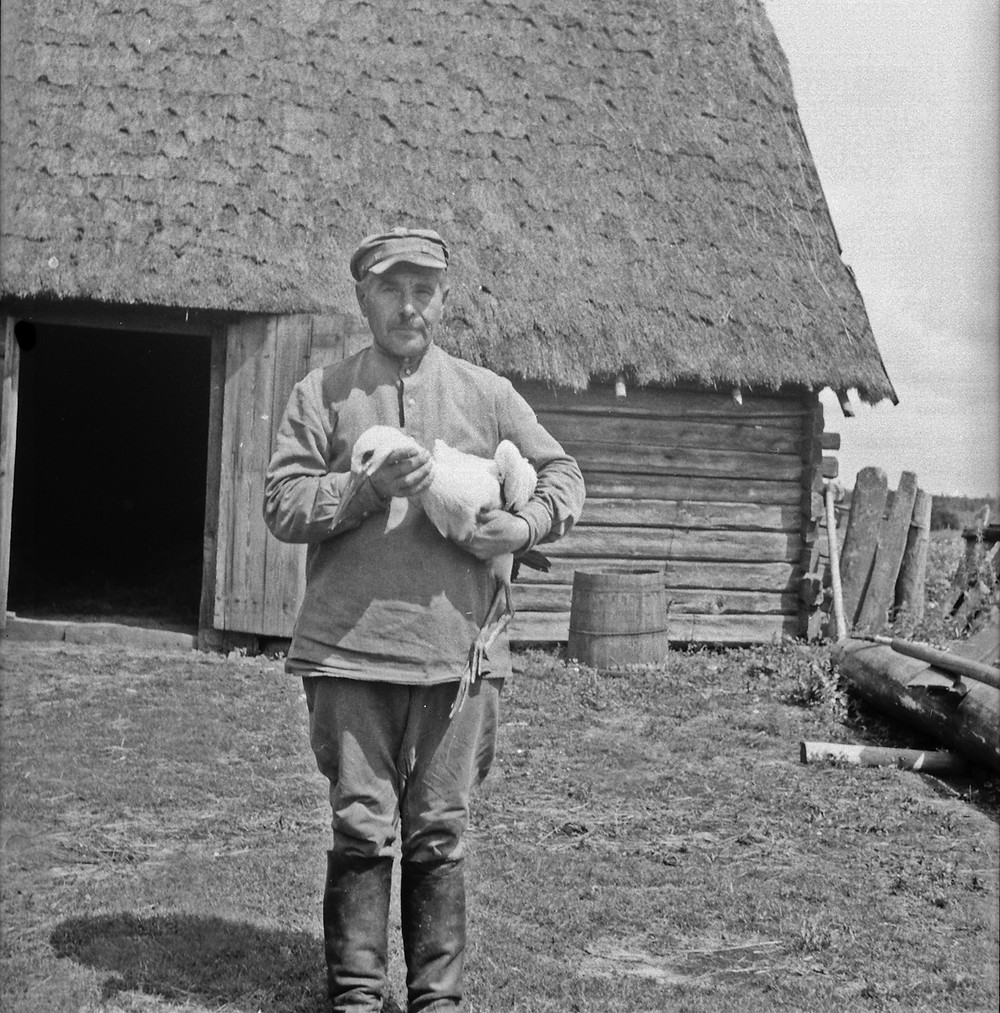 Peasant with white stork fledgling on his yard in the Haliandernja hamlet in 1949. Photo by Uladzimir Datskevich (from the collection of Mikola Cherkas).