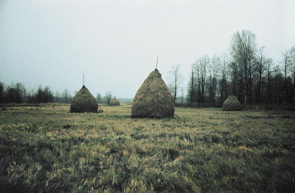 Стажкі сена ў абалоні Волькі, Налібоцкая пушча, 1983.