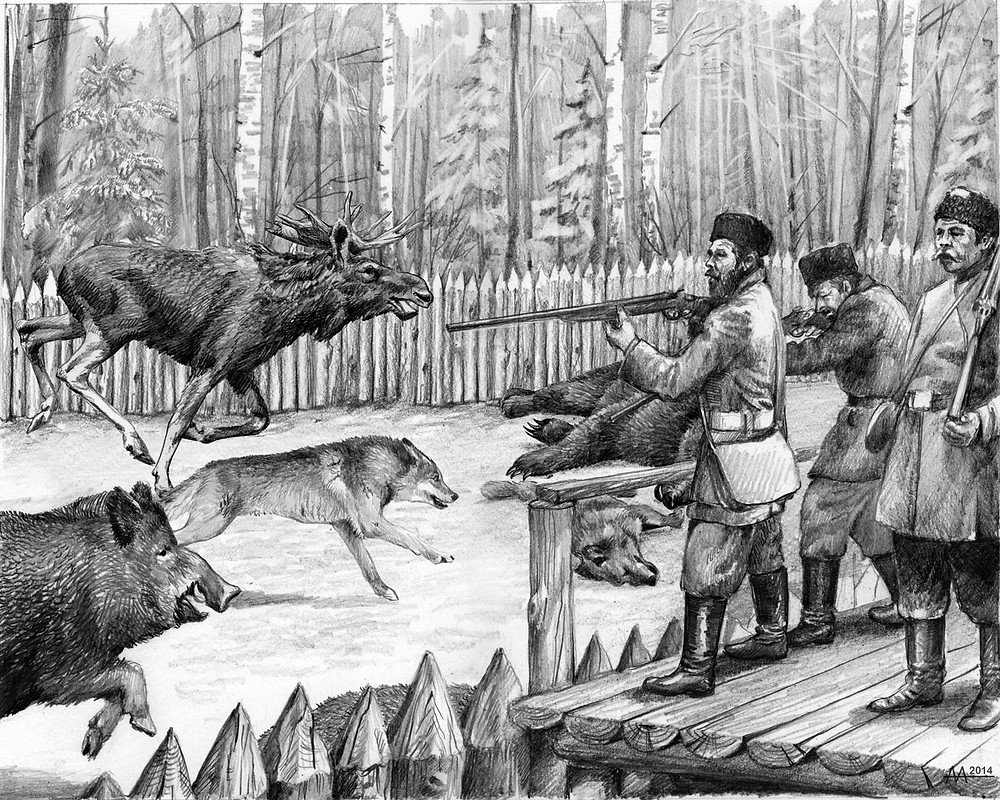 Shooting of games during hunt-drive by noble hunters in Naliboki Forest, 18th century. Drawing by Aliaksandr Mitianin.