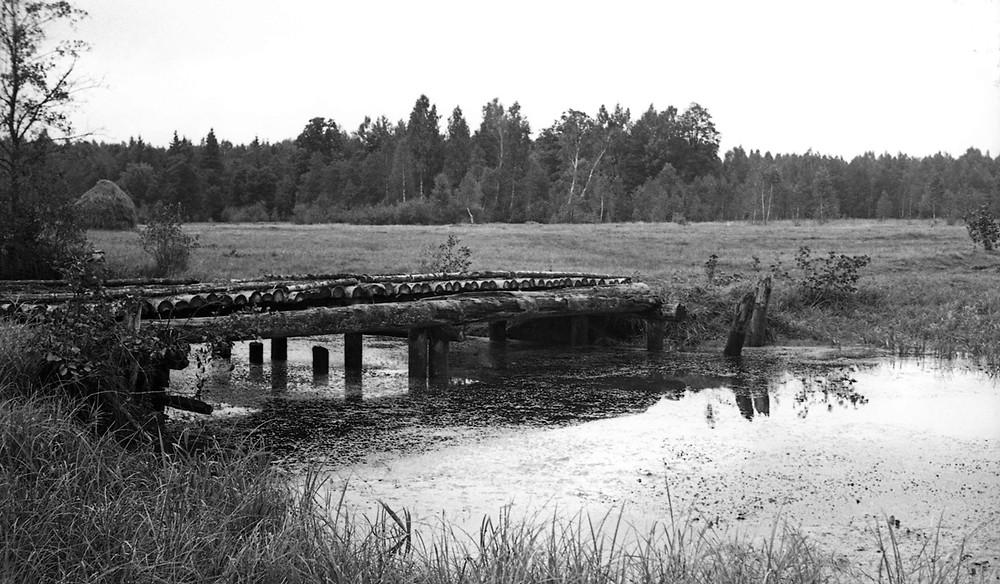 Мост праз рэшты Вусы-Вушы перад выездам да Будаў. Фота Івана Данілюка 1949 года з калекцыі Міколы Чэркаса.