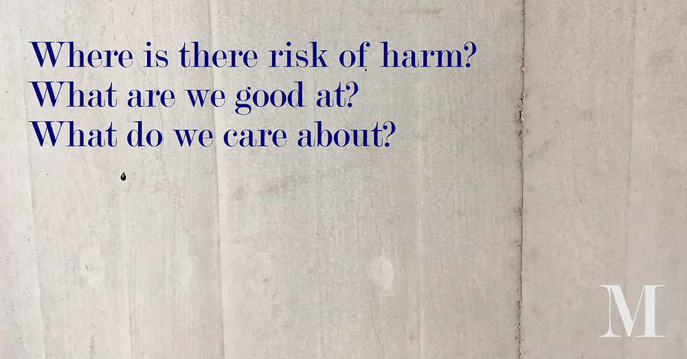 Where is there risk of harm? What are we good at? What do we care about?