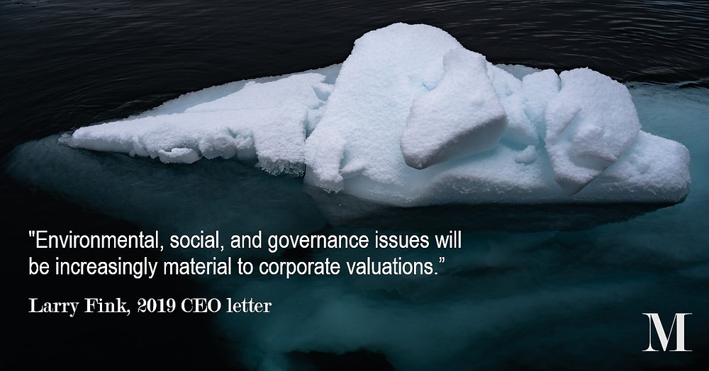 Larry Fink thinks ESG is very important for company valutations