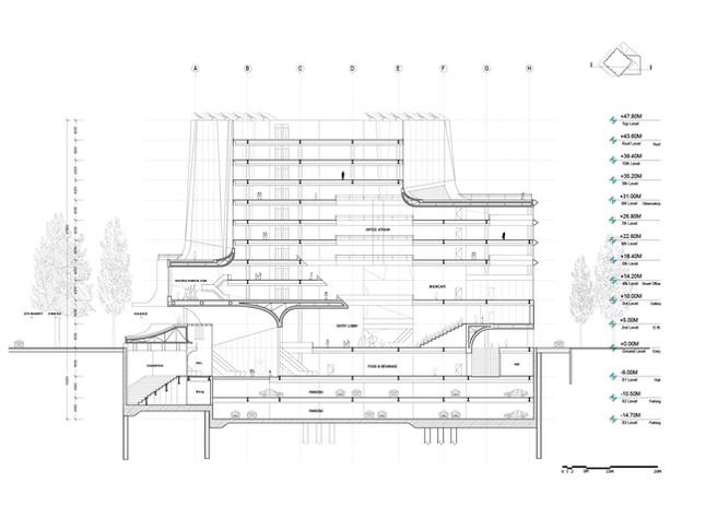 Section-02.jpg
