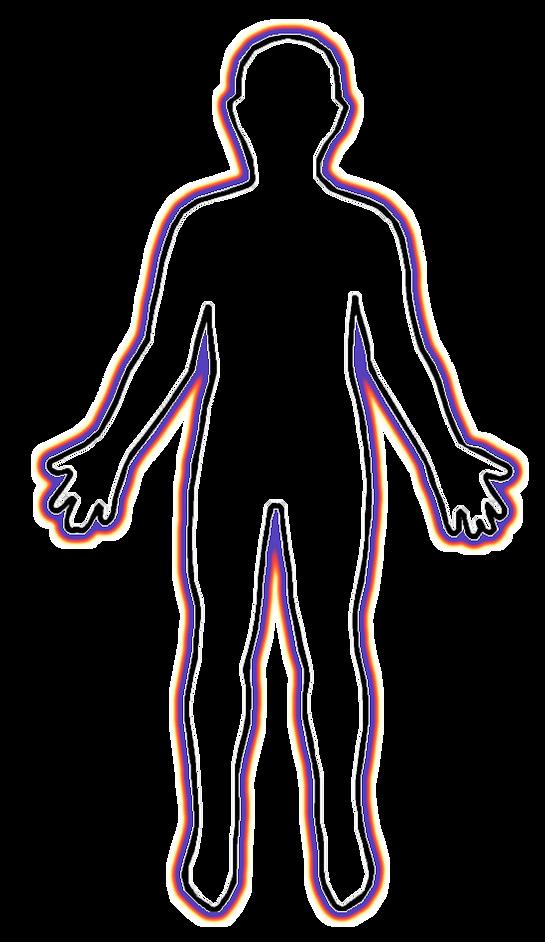 MSMV HUMAN BODY.png