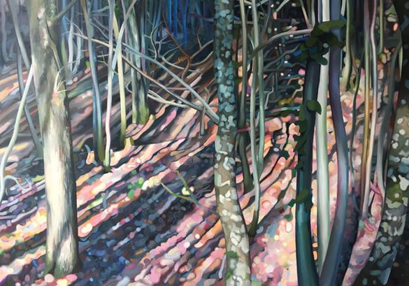 Forêt de montrichard