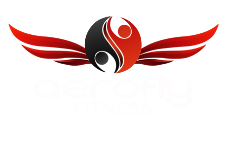 Aerofly Logo 1000 px.png