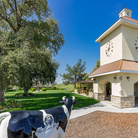 Agrovice has helped to establish one of the best known and most beautiful wineries in the Central California foothills.  Through various marketing and management tactics, they have helped grow this winery into an award-winning destination visited by thousands annually.