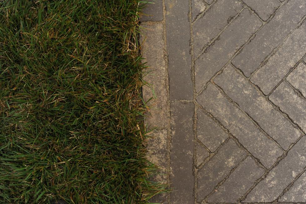 Sorensen.pathway.TIMSNYDERPHOTO2019-13.j