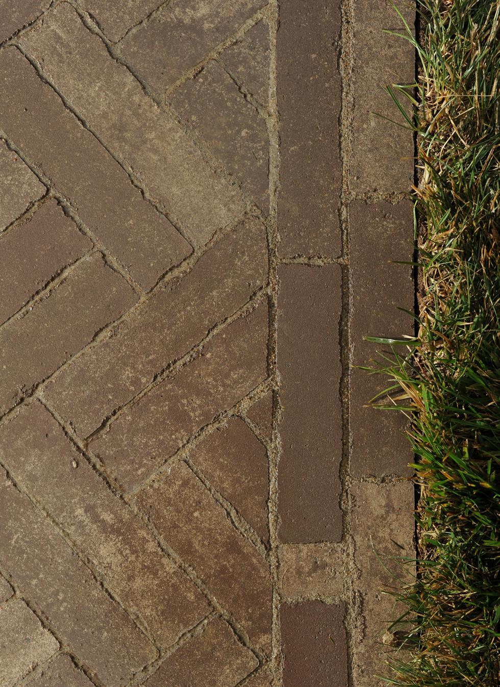 Sorensen.pathway.TIMSNYDERPHOTO2019-20.j