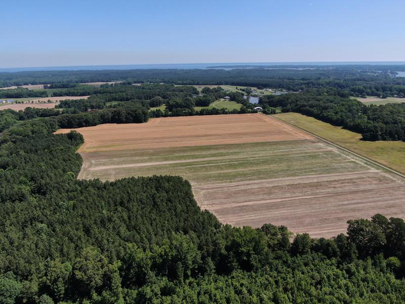320.Pine.Aerial.TIMSNYDERPHOTO2021-5.jpg
