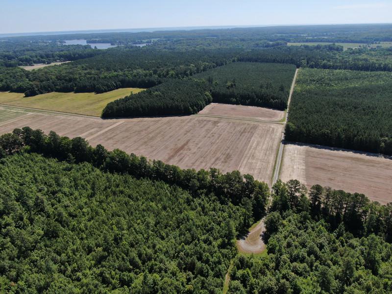 320.Pine.Aerial.TIMSNYDERPHOTO2021-4.jpg