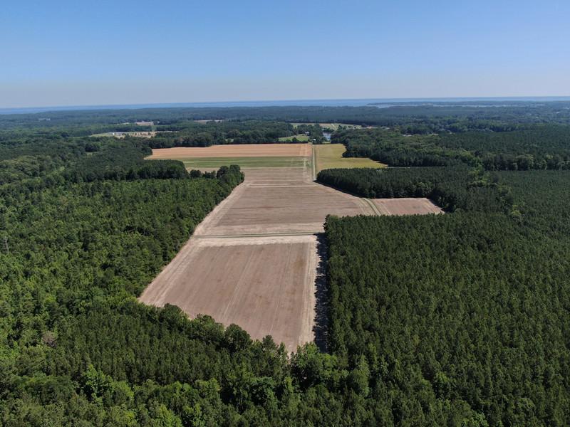 320.Pine.Aerial.TIMSNYDERPHOTO2021-2.jpg