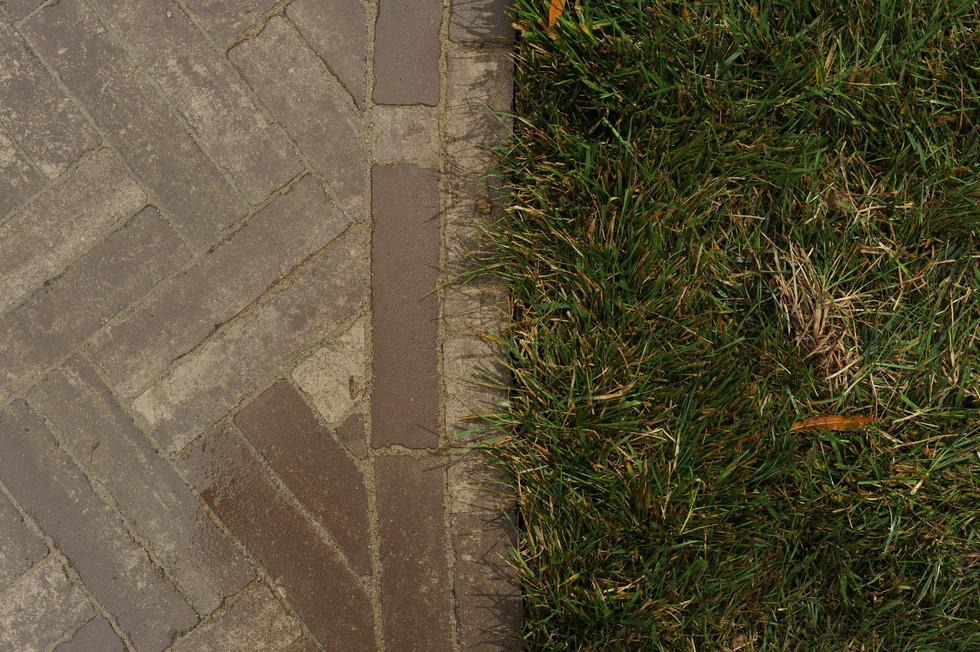 Sorensen.pathway.TIMSNYDERPHOTO2019-12.j