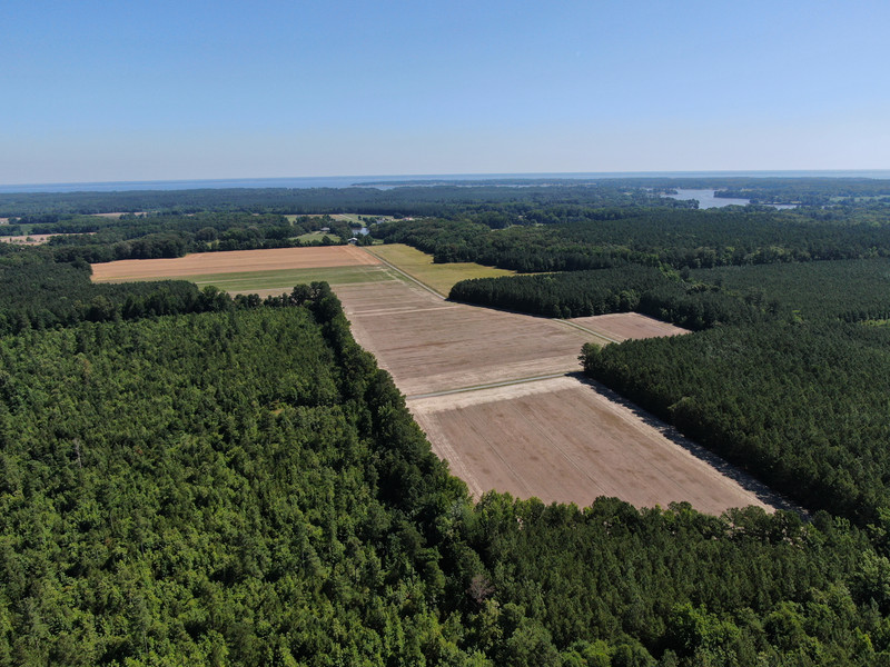 320.Pine.Aerial.TIMSNYDERPHOTO2021-3.jpg