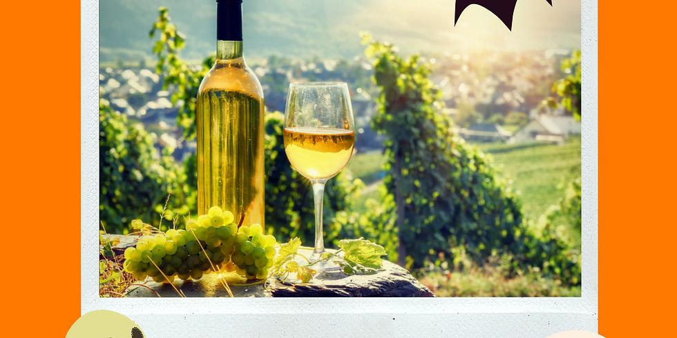 Tour enológico de Vinos por regiones de Portugal