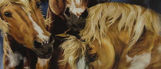 Find 9 Horses - Gardner