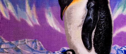 Penguins- Penfound
