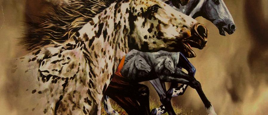 Find 13 Horses - Gardner