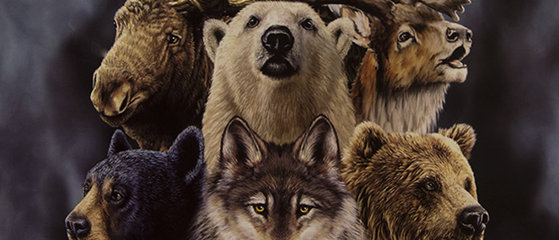 Alaskas Wildlife - Gardner