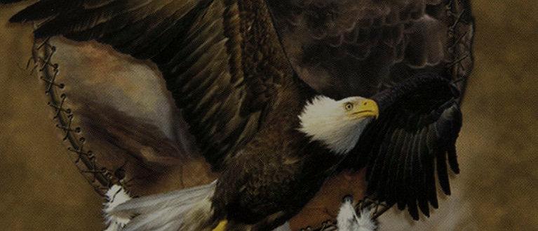 Eagle Spirit Shield - Cavalaris