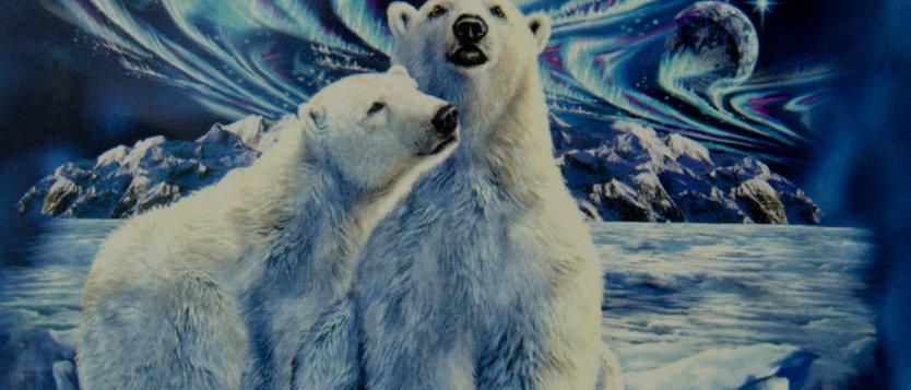 Polar Bears - Gardner