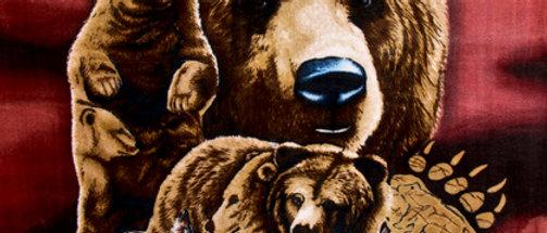 8 Brown Bears - Gardner