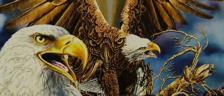 13 Eagles - Gardner