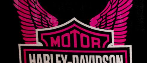 Harley - Pink Wings