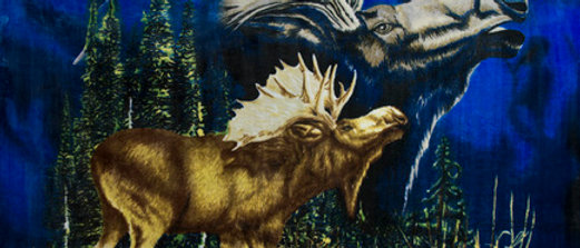 Moose Calls - Gardner