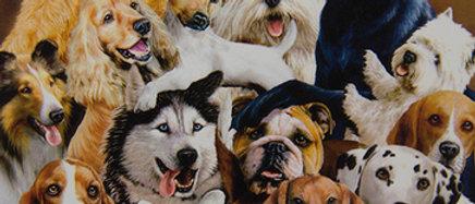 Dog Pile - Gardner