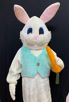 Easter-bunny.jpeg