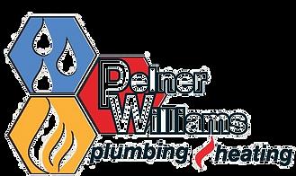 pelner for nsltr_edited.png