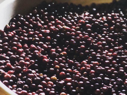 How Many Elderberries Does It Take?