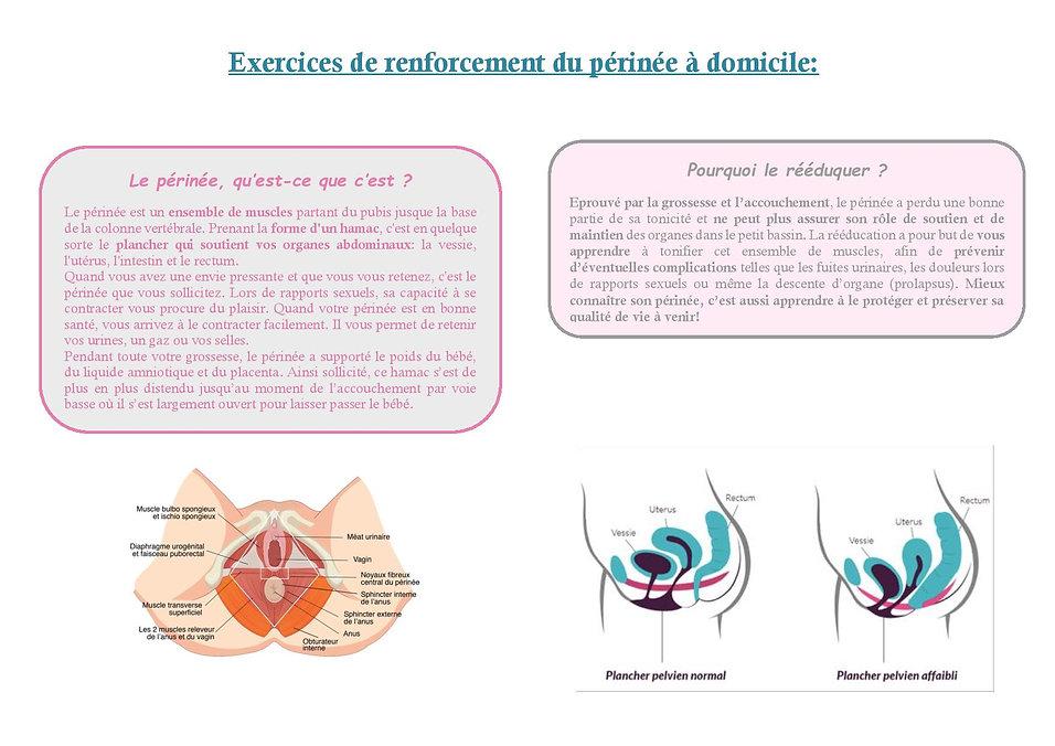 Exercices_de_renforcement_du_périnée-_