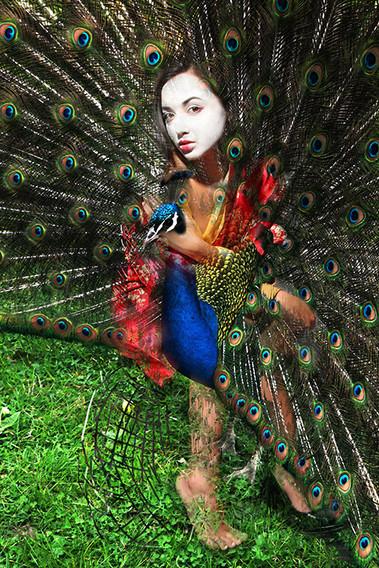 Geisha N2