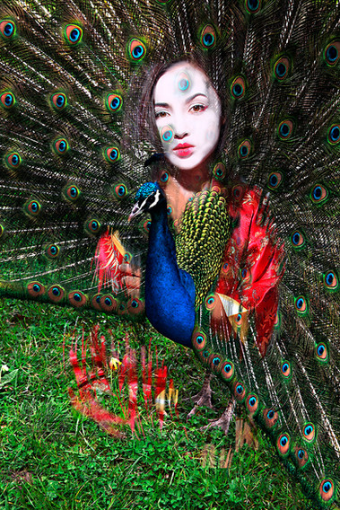 Geisha N4