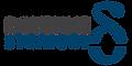 DOYENNE STRATEGY Logo -1.png