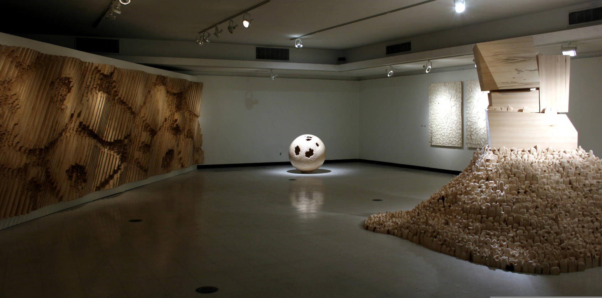Morphology (Installation View)