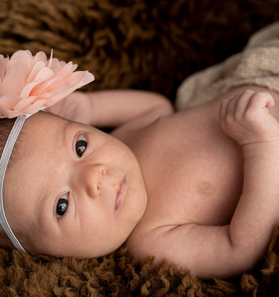 Neugeborenenfotografie Wangerland