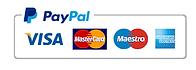 paypal merchandising logo.png