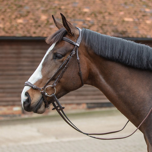 Mark Todd German Drop Noseband Bridle with reins