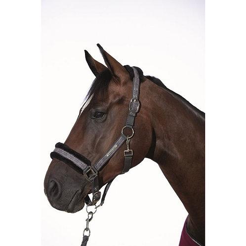 Cavalli Puri Odello headcollar set