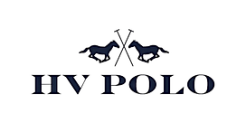 HV%20POLO%20LOGO_edited.png