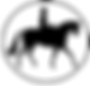 side saddle association logo.png