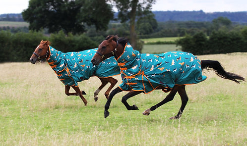 Gallop combo turnout